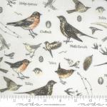 Botanicals Parchment Birds